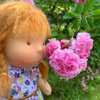 Червената шапчица мирише роза